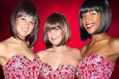 Motown Diva's Show with The Dreamettes