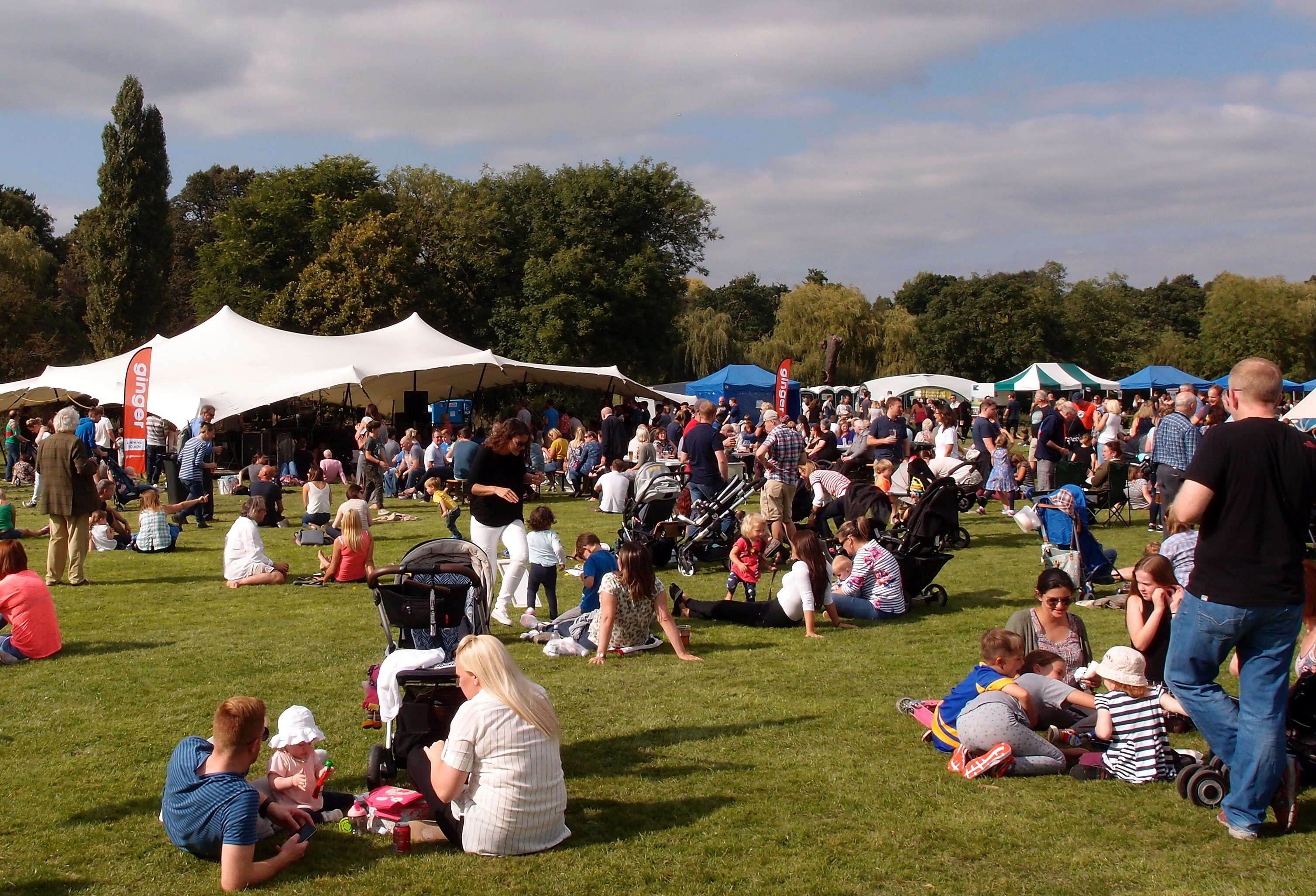 Kenilworth Arts Festival launches crowdfunding drive for 2017